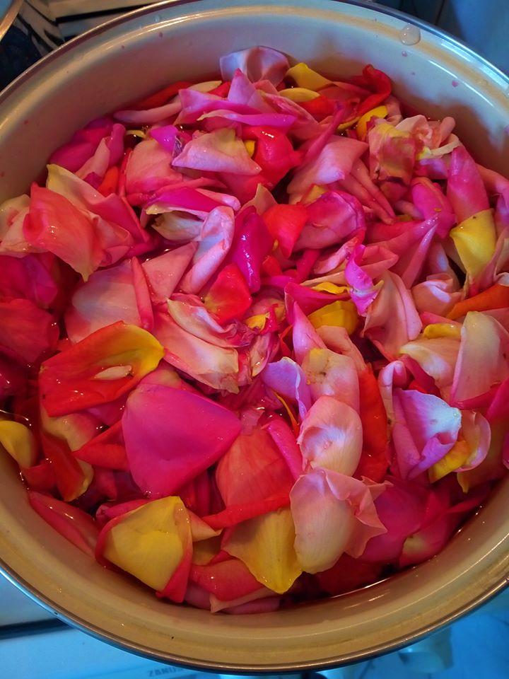Rózsa főzés