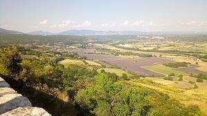 Provence-i táj